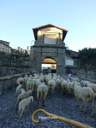 Porta_SGiacomo