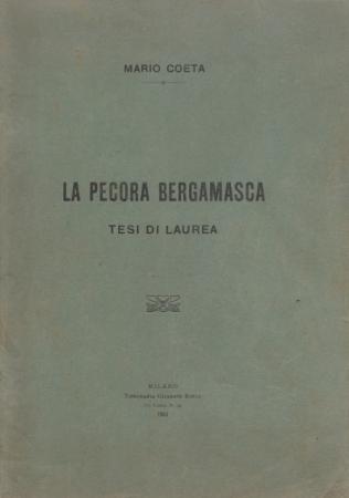 Tesi_Coeta (449x640)