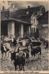 piazza_caprera