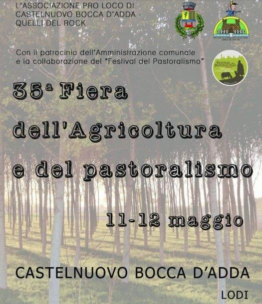 Castelnuovo1